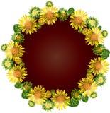 Round wianek kwitnie słoneczniki kolor żółty, wśrodku pustej przestrzeni Fotografia Royalty Free
