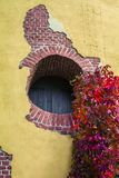 Round window - a loophole in a brick wall of the Tower Ruin in the Catherine Park and the curling garden ivy in bright autumn. Round window - a loophole in a royalty free stock photo