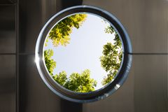 Circle windows with Top view with tree branch and blue sky vector illustration