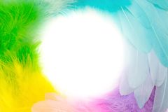 Round wreath of bright colored feathers. White background. Multicolored feathers are arranged in a circle. Iridescent colors Royalty Free Stock Images