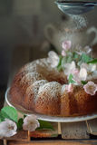 Round wreath cake with powdered suga. R a pleasant treat to the tea table. The photo was taken using a lens of 50 mm Royalty Free Stock Photography
