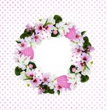 Round wreath with Easter eggs, apple and peach tree flowers. On white and pink polka dot background. Flat lay Royalty Free Stock Photography