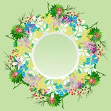 Round wreath of field flowers of chamomiles, twigs, burdock and. Red berries, empty space in the middle, green background Stock Image
