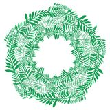 Round wreath of green branches. Frame of fern. For invitation cards, postcards and your design Royalty Free Stock Photography