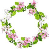 Round wreath with spring tree flowers Stock Image