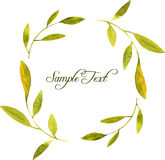 Round wreath with watercolor green leaves and branches Royalty Free Stock Images