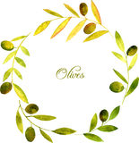 Round wreath with watercolor green leaves and olives Royalty Free Stock Images