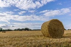 Straw bale in a large field Stock Image