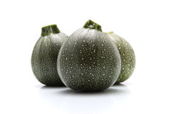 Round zucchini Stock Photo