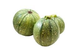 Round zucchini zdjęcie stock