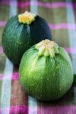 Round zucchinis. Two green fresh round zucchinis Royalty Free Stock Photo