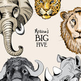 Rounded design with animals from Africa`s big five. Collection of animals from Africa`s big five. Vector illustration on light light brown background stock illustration