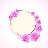 Rounded frame and sticker with flowry decoration. Royalty Free Stock Photos
