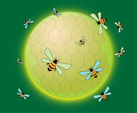 Rounded honeycomb. Abstract green illustration with rounded honeycomb and working bees Stock Photography