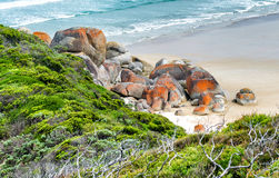 Rounded red rocks in Wilsons Promontory - Squeaky Beach Stock Images