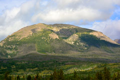 Rounded Tree Covered Mountain Top. A mountain with trees and exposed rock Royalty Free Stock Photos