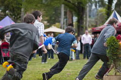 Rounding the bend. MARYSVILLE, VICTORIA, AUSTRALIA - November 2: A group of men and boys compete for first place in a hobby horse race at the Marysville stock photos