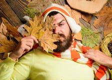 Roupa e acessórios acolhedores caídos O chapéu e o lenço listrados feitos malha desgaste do moderno guardam as folhas de outono A imagem de stock