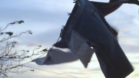 Roupa que seca no vento video estoque