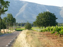Rousset  village vineyards landscape Stock Photography