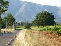 Rousset  village vineyards landscape Stock Photography