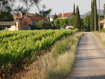 Rousset  village vineyards Royalty Free Stock Images