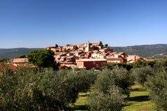 Roussillon com azeitonas Imagem de Stock Royalty Free