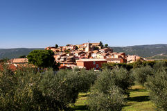 Roussillon with olives. Village Roussillon in Provence, France with olive grove on foreground Royalty Free Stock Image