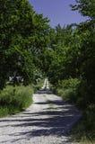 Route à l'école inférieure de crique de Fox Image libre de droits