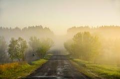 Route à l'aube dans la forêt Images stock