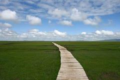 Route à l'horizon photographie stock