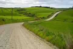 Route à la baie Nouvelle-Zélande de curiosité image stock