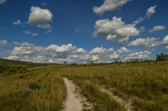 Route à la campagne, Brésil Images libres de droits