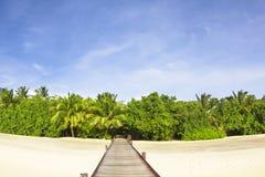 Route à la plage et à la forêt image libre de droits