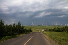Route à la prairie Photos stock
