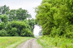 Route à la zone La route passant entre les arbres Voie par le symbole de forêt de la vie Images libres de droits