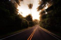 Route à Milford Sound Nouvelle-Zélande photo libre de droits