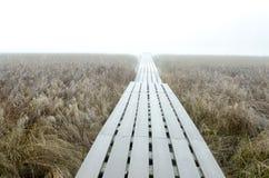 Route à nulle part le matin brumeux image libre de droits