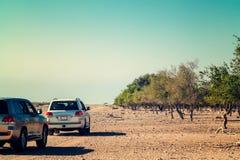 Route à Safari Park sur Sir Bani Yas Island, Abu Dhabi, Emirats Arabes Unis photographie stock
