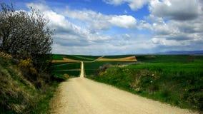 Route à travers le champ avec les nuages pelucheux Photographie stock