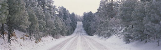 Route 64, AZ after snowfall Stock Image