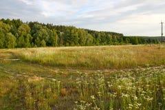 Route abandonnée dans un domaine Photos libres de droits