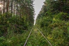 Route abandonnée de piste unique Image libre de droits