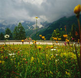 Route alpestre Image libre de droits
