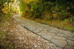 Route antique dans les bois Images stock