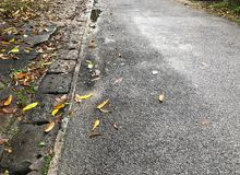 Route après la pluie image stock