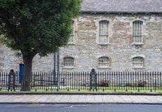 Route, arbre, mur en pierre, barrière de fer dublin Images stock