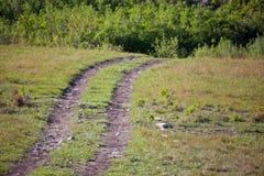 Route aux bois Image libre de droits