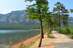 Route aux montagnes Images stock