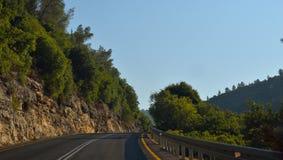 route avec beaucoup d'arbres Photos libres de droits
